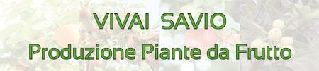 Vivaio piante da frutto a Padova
